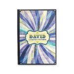 David y el gran circo de los valientes